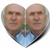 ali ihsan bektaş Profil Fotoğrafı