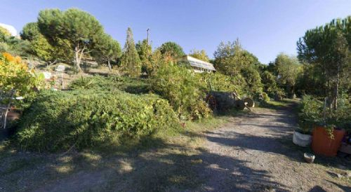 Atatürk Botanik Bahçesi