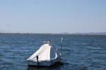 Altınova Denizi ve Tekneler