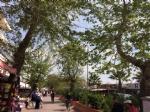 Akçay Meydan