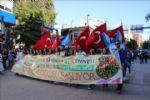 29. Uluslararası Bandırma Kuş Cenneti Kültür ve Turizm Festivali