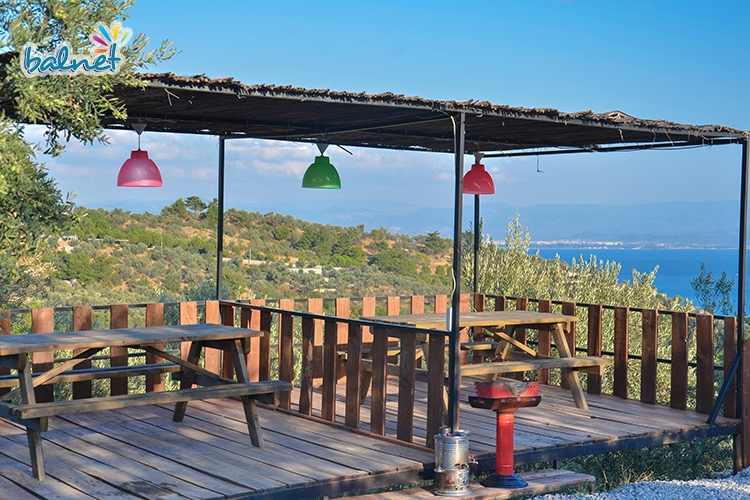 Çınar Avlu Köy Sofrası
