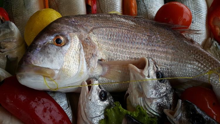 Balık As Restaurantta Yenir