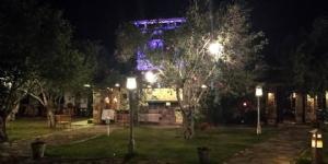 Calidus Hotel