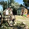 Wagon Consept Camping