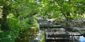 Naturland Piknik Ve Kamp Alan�