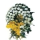 Cenaze Çelengi,arajman, cicek, çiçek, çiçekci, orkide çiçekcilik, gül, gül demeti, lale, orkide, kasımpatı, yapma çiçek, çiçek buketi, çelenk,cenaze çelengi, hediyelik eşya, güller, gul buketi, kasımpatı, krizantem, sevgililer günü, önemli günler, yapay çiçek, çelenk