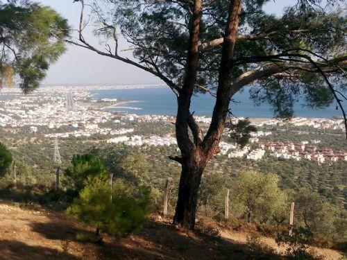 Tahtakuşlar Köyü