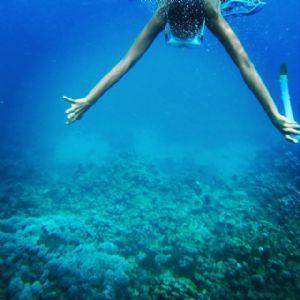 Bozcaada Dalış / Bozcaada Diving