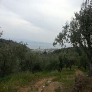 Çamlıbel Köyü Kazdağları